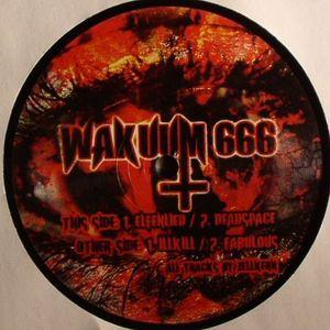 ZELLKERN - Wakuum 666