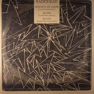 RADIOHEAD - Morning Mr Magpie (Nathan Fake remix)