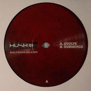 DVS1 - Evolve