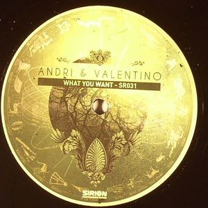 ANDRI/VALENTINO - What You Want