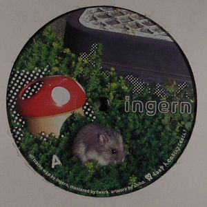INGERN - Shorty EP