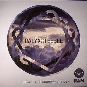 CALYX/TEEBEE - Elevate This Sound
