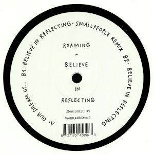 ROAMING - Believe In Reflecting