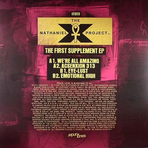 NATHANIEL X PROJECT , The - The First Supplement EP