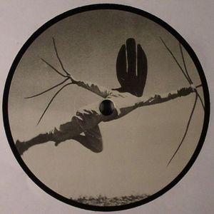 IASI - Vision EP