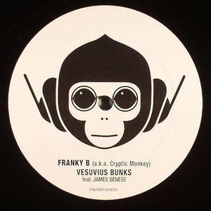 FRANKY B aka CRYPTIC MONKEY feat JAMES SENSE - Vesuvius Bunks