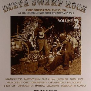 VARIOUS - Delta Swamp Rock: More Sounds From The South 1968-75 Vol 2