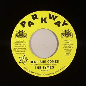 TYMES, The - Here She Comes