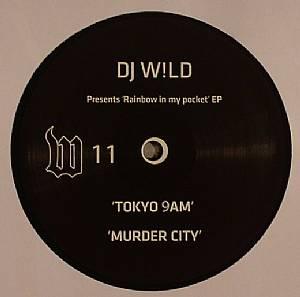 DJ WILD - Rainbow In My Pocket