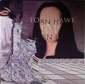 TORN HAWK - We Burnt Time