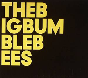 BIG BUMBLE BEES, The - The Big Bumble Bees