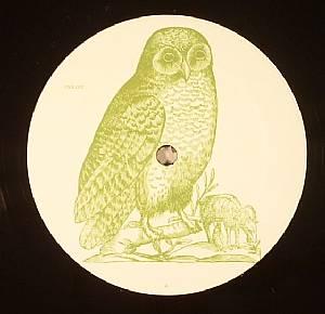 OWL - Owl 2