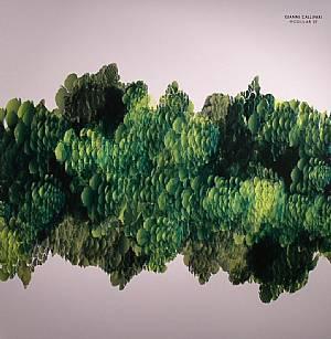CALLIPARI, Gianni - Modular EP