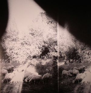 GODSPEED YOU BLACK EMPEROR - Asunder Sweet & Other Distress'