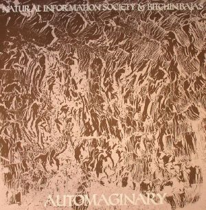 NATURAL INFORMATION SOCIETY/BITCHIN BAJAS - Automaginary