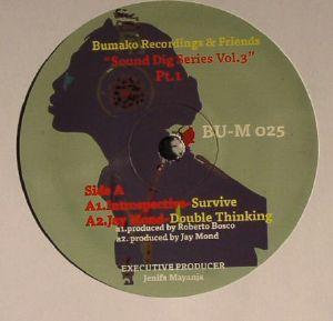 INTROSPECTIVE/JAY MOND/SEAN BIRD/WALLFLOWER - Sound Dig Series: Vol 3 Part 1