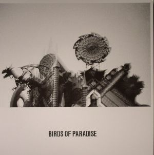 BIRDS OF PARADISE - Love Is Confusion