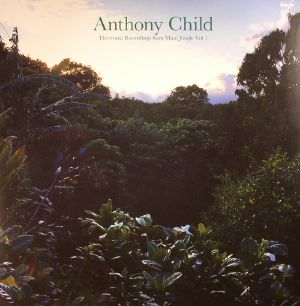 CHILD, Anthony - Electronic Recordings From Maui Jungle Vol 1