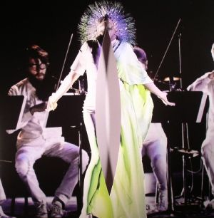 BJORK - Vulnicura Strings: The Acoustic Version: Strings Voice & Viola Organista Only