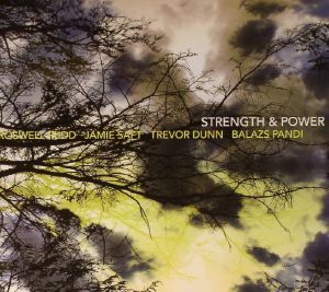RUDD, Roswell/JAMIE SAFT/TREVOR DUNN/BALAZS PANDI - Strength & Power