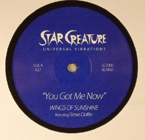 WINGS OF SUNSHINE feat STEVE DOLFIN - You Got Me Now