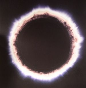 HAELOS - Full Circle