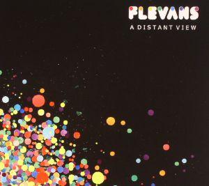 FLEVANS - A Distant View
