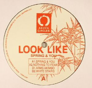 LOOK LIKE - Spring & You