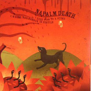 NAPALM DEATH/MELT BANANA - Like Piss To A Sting