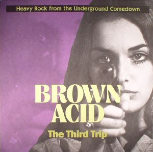 VARIOUS - Brown Acid: The Third Trip
