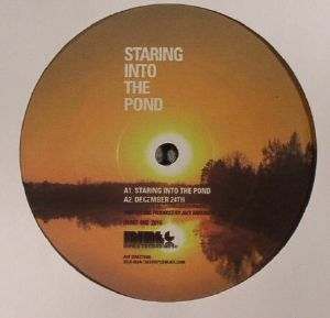 ANDERSON, Joey - Staring Into The Pond