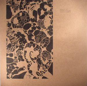 VILLALOBOS, Ricardo - Empirical House LP