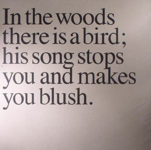 NICOLAI, Olaf - In The Woods There Is A Bird