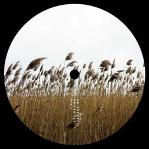 STOJCHE/AWOL/LUKE HESS/DEEP'A & BIRI - 10 Years Of Jaunt: Land