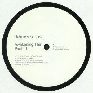 BICKNELL, Steve - Awakening The Past 1