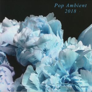 VARIOUS - Pop Ambient 2018