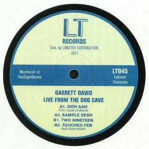 DAVID, Garrett - Live From The Dog Cave