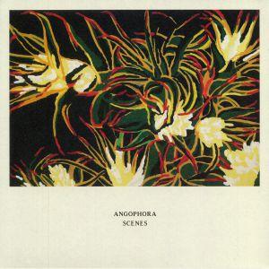 ANGOPHORA - Scenes