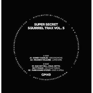 CHARLES, Sidney/RICARDO VOLILOBE/BAD BOY BILL/J PAUL GETTO/MILTY EVANS/RUBB SOUND SYSTEM - Super Secret Squirrel Trax Vol 5