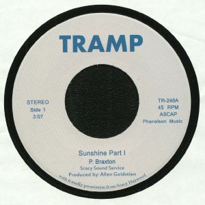 SCACY SOUND SERVICE - Sunshine