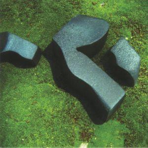 CAMILA FUCHS - Heart Pressed Between Stones