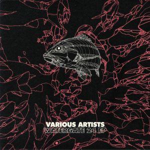 AME/JIMI JULES/DOMENCIO FERRARI/EGOPUSHER/ED ED/PETJA VIRIKKO - Watergate 24 EP