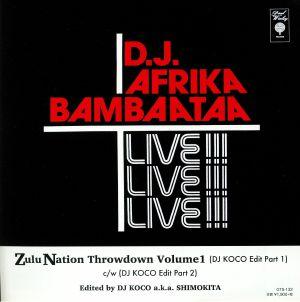 AFRIKA BAMBAATAA - Zulu Nation Throwdown Volume 1