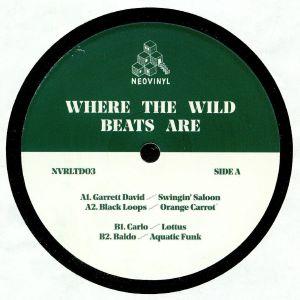 DAVID, Garrett/BLACK LOOPS/CARLO/BALDO - Where The Wild Beats Are