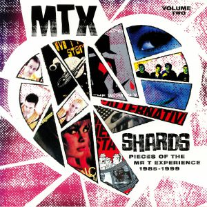 MR T EXPERIENCE - Shards: Pieces Of The Mr T Experience Vol 2: 1985-1999