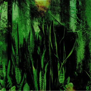 PROMISE RING, The - Wood/Water (reissue)