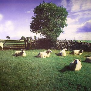 KLF, The - Chill Out