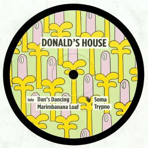 DONALD'S HOUSE - Dan's Dancing