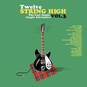 VARIOUS - Twelve String High Vol 3