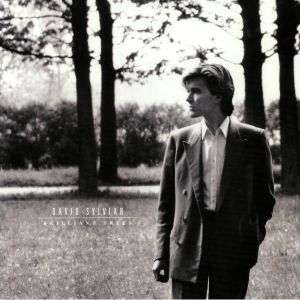 SYLVIAN, David - Brilliant Trees